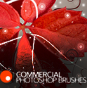 Commercial Photoshop Brushes