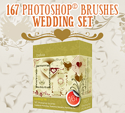 Wedding Photoshop brushes
