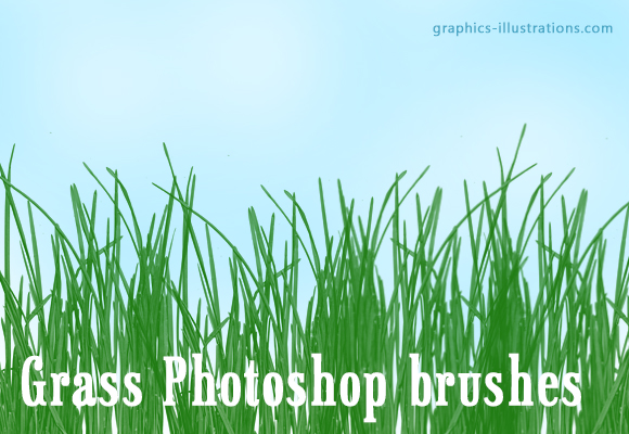 feature post image for Download Free Photoshop Brush - Grass