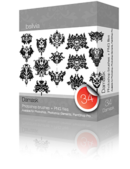 Damask Photoshop Brushes (34+34+34) + 34 PNGs