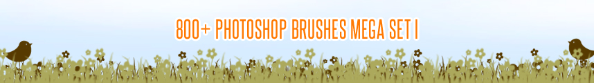 800+ Photoshop Brushes MEGA SET I