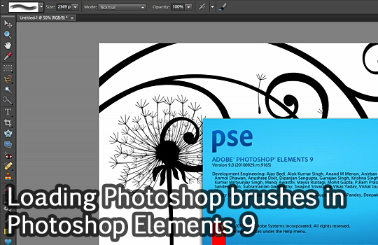 feature post image for Tutorial: Loading Photoshop brushes in Photoshop Elements 9